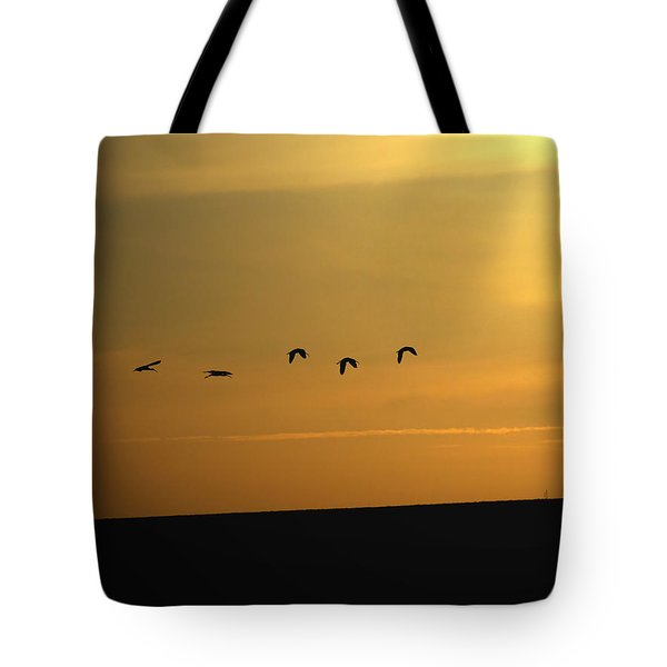 Ibis Sunrise Tote Bag by Ernie Echols