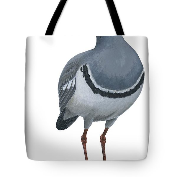 Ibisbill Tote Bag by Anonymous