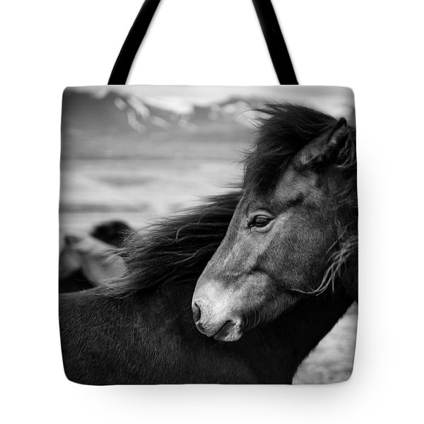 Icelandic Horses Tote Bag by Dave Bowman