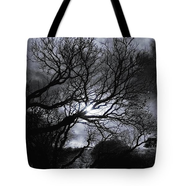 Ichabod's Pathway Tote Bag by Donna Blackhall
