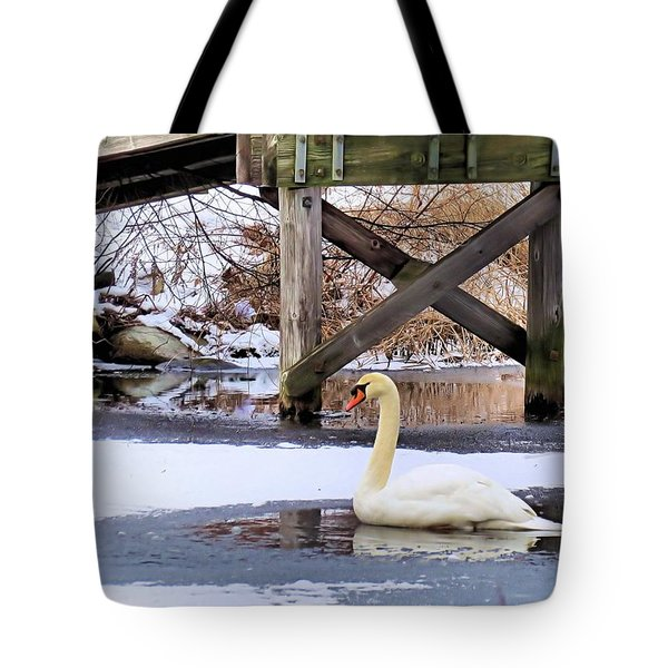 Icy Pond Tote Bag by Janice Drew