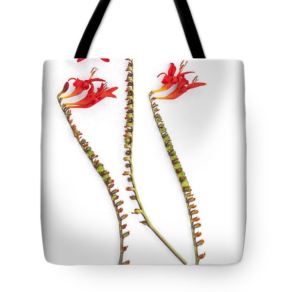 If Seahorses Were Flowers Tote Bag by Carol Leigh