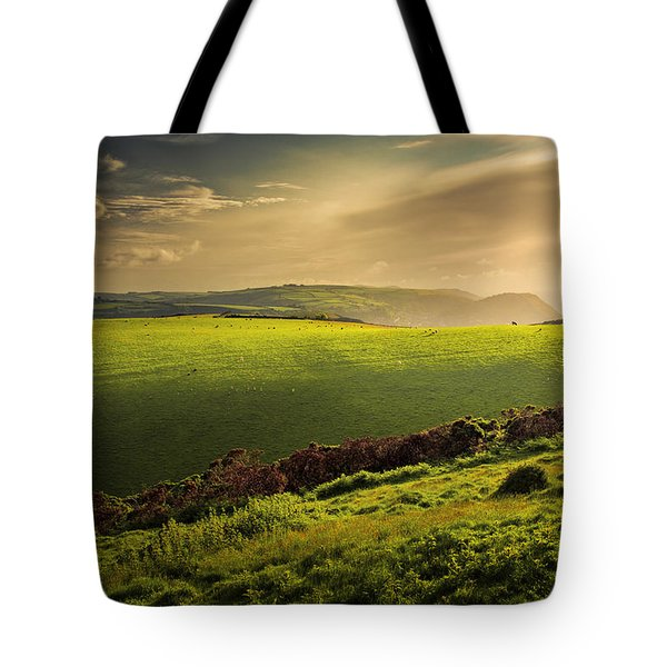 Illuminated Evening Landscape North Devon Tote Bag by Dorit Fuhg