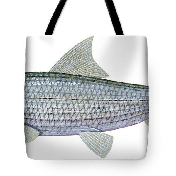 Illustration Of A Bonefish Albula Tote Bag by Carlyn Iverson