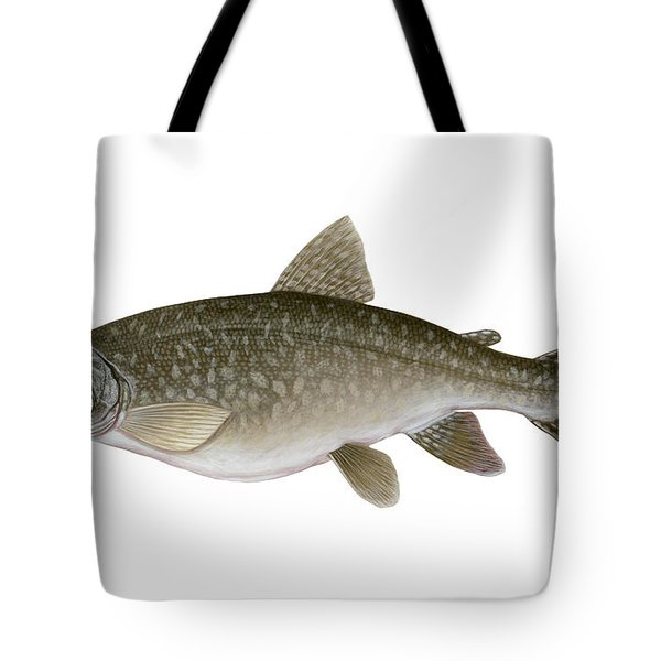 Illustration Of A Lake Trout Salvelinus Tote Bag by Carlyn Iverson