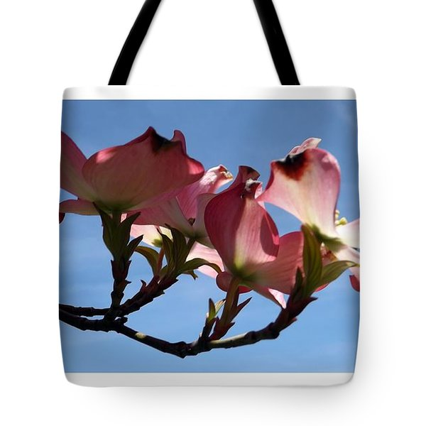 In All Its Glory Tote Bag by Sara  Raber