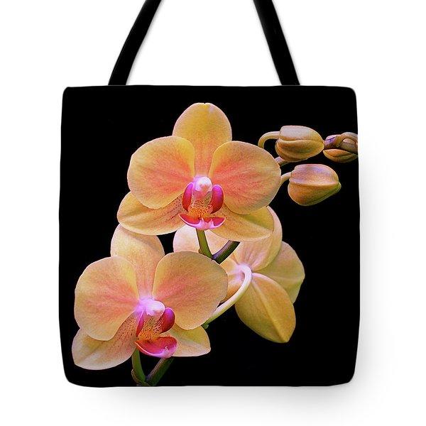 In Bloom Tote Bag by Rona Black