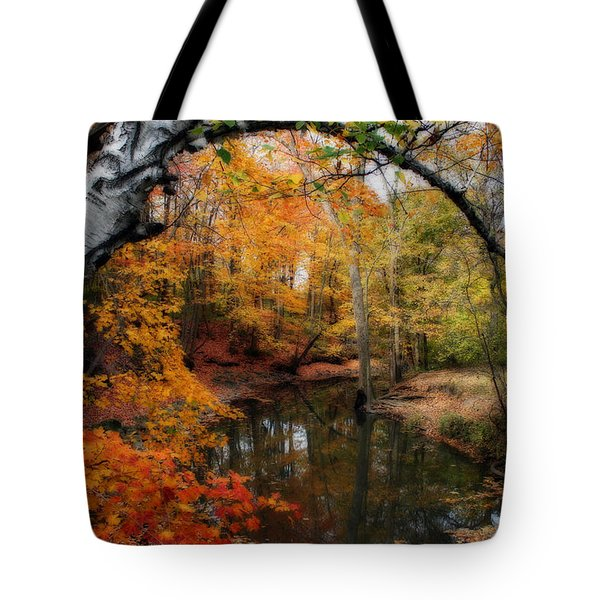 In Dreams Of Autumn Tote Bag by Kay Novy