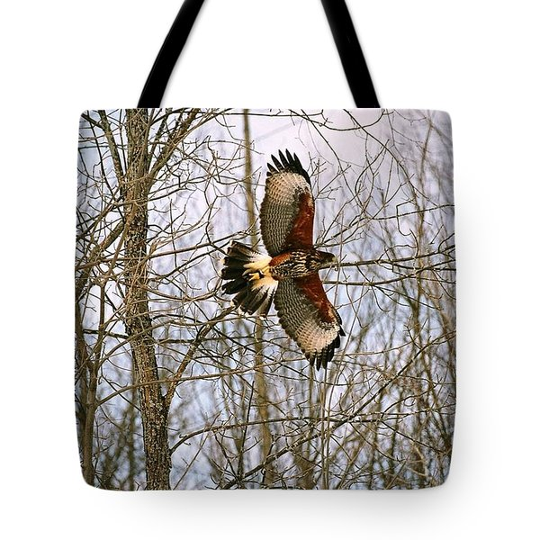 In Flight Tote Bag by David Porteus