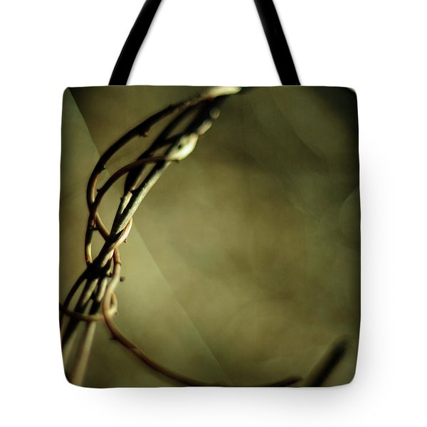 In Shadows And Light Tote Bag by Rebecca Sherman