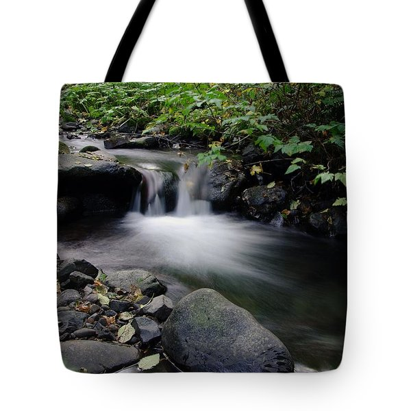 In Slow Pools Where Serenity Abounds Tote Bag by Jeff Swan