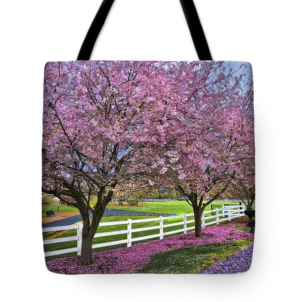 In The Pink Tote Bag by Debra and Dave Vanderlaan
