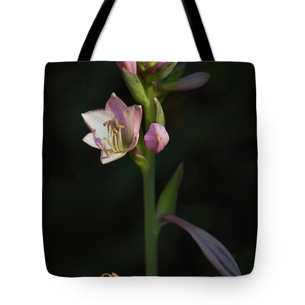 In The Shadows Of A Warm Summer Evening Tote Bag by Rory Sagner