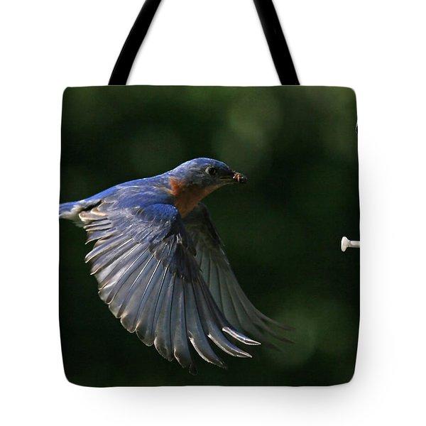 Incoming Tote Bag by Douglas Stucky