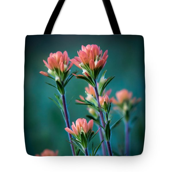 Indian Paintbrush At Dawn Tote Bag by James Barber
