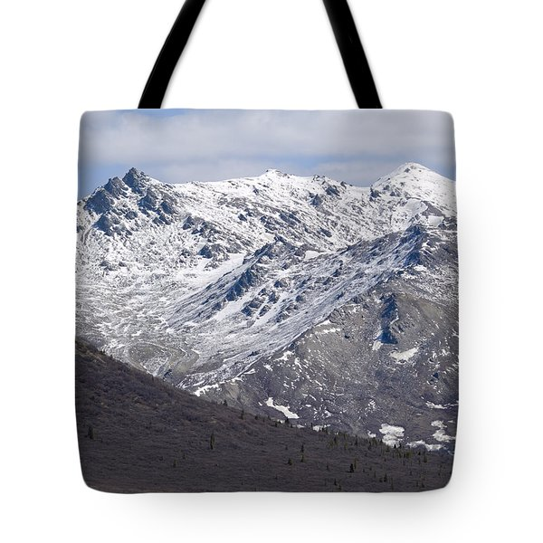 Inside Denali National Park 2 Tote Bag by Tara Lynn