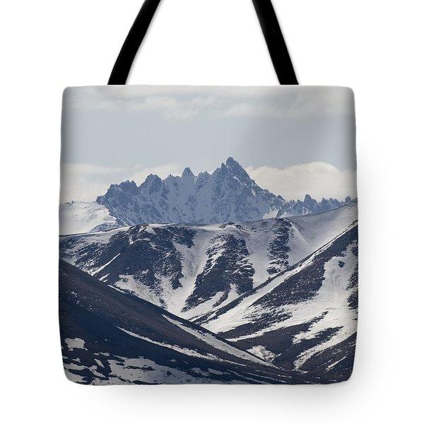 Inside Denali National Park Tote Bag by Tara Lynn