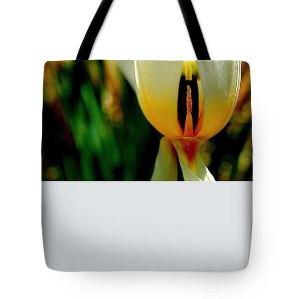Inside Out Tote Bag by Rona Black