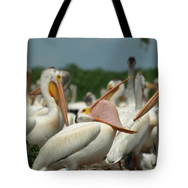 Insideout Tote Bag by James Peterson