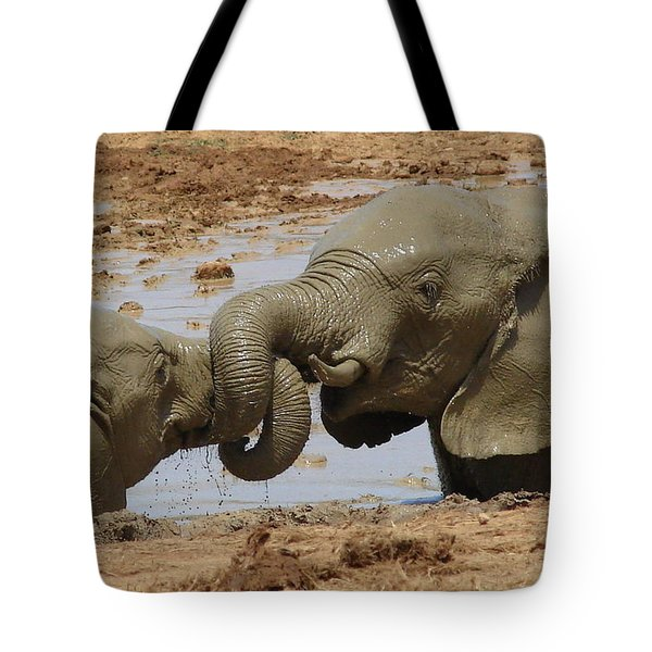 Intertwined Tote Bag by Ramona Johnston