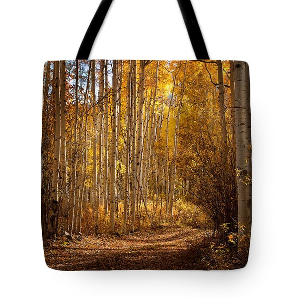Into The Color Tote Bag by Steven Reed