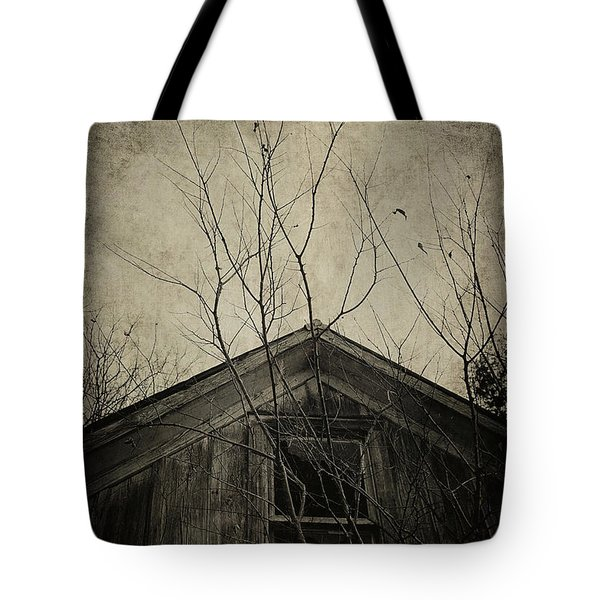 Into the Dark Past Tote Bag by Trish Mistric