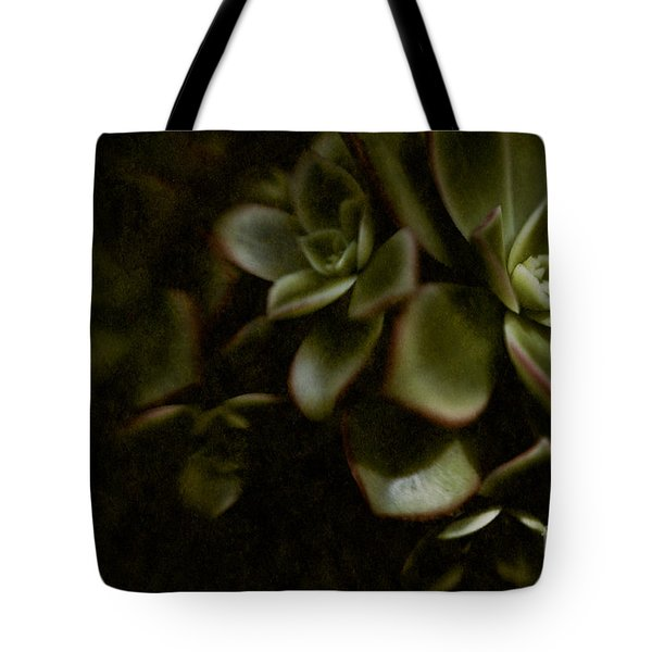 Into the Light Tote Bag by Venetta Archer