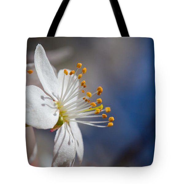 Into The Sun Tote Bag by Andreas Levi