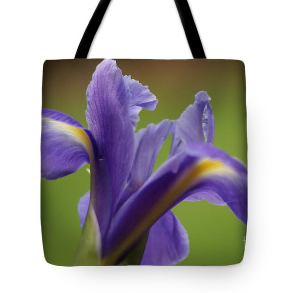 Iris 3 Tote Bag by Carol Lynch