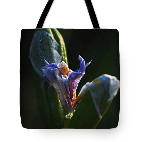 Iris Emerging  Tote Bag by Rona Black