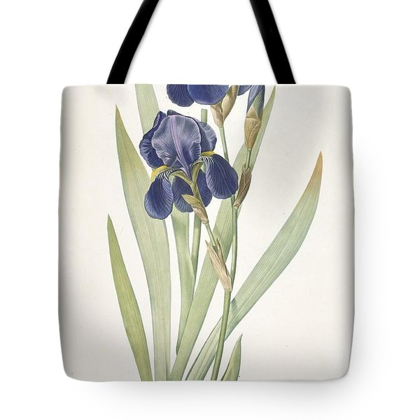 Iris Germanica Bearded Iris Tote Bag by Pierre Joseph Redoute