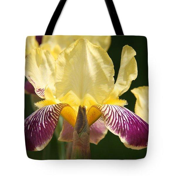 Iris Tote Bag by Jolanta Anna Karolska