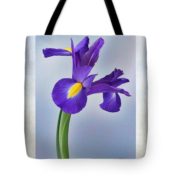 Iris Reticulata Tote Bag by John Edwards