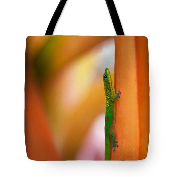 Island Friend Tote Bag by Mike Reid