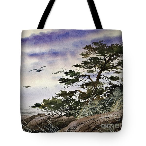 Island Sunset Tote Bag by James Williamson