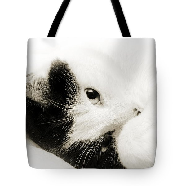 It Is Hard To Be So Cute Tote Bag by Andee Design