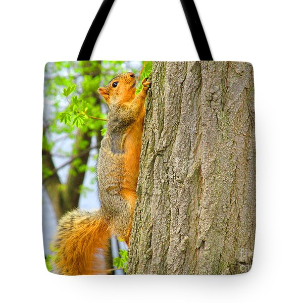 It Is Hard Work Getting To The Top Tote Bag by Tina M Wenger