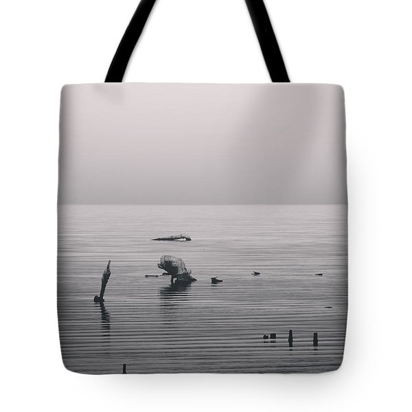 It Was Lonely There Tote Bag by Laurie Search