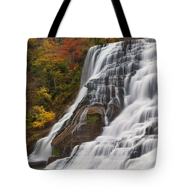 Ithaca Falls In Autumn Tote Bag by Michele Steffey