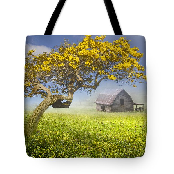It's a Beautiful Day Tote Bag by Debra and Dave Vanderlaan