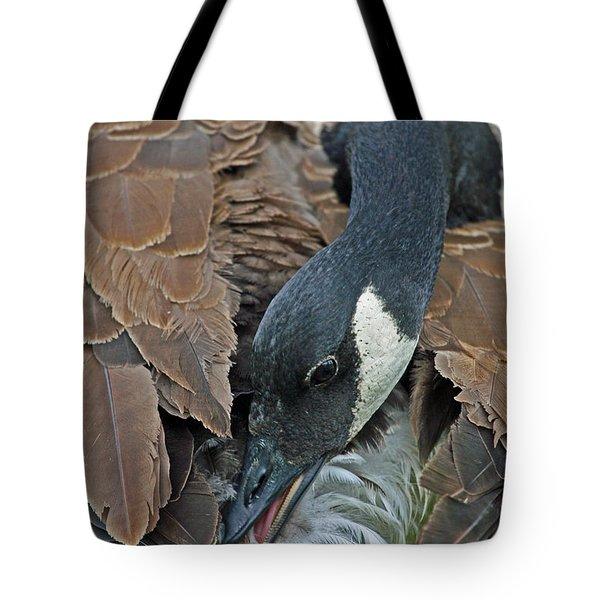 Its A Long Stretch Tote Bag by Karol Livote