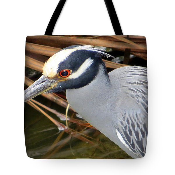 I've Got My Red Eye On You Tote Bag by Dorothy Menera