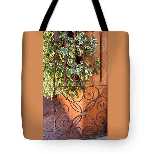 Ivy And Old Iron Gate Tote Bag by Ben and Raisa Gertsberg