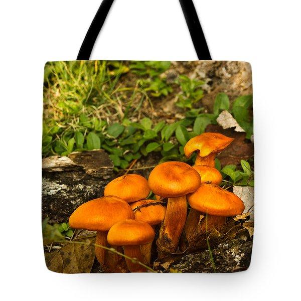Jack Olantern Mushrooms 22 Tote Bag by Douglas Barnett