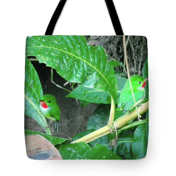 Jamaican Toadies Tote Bag by Carey Chen