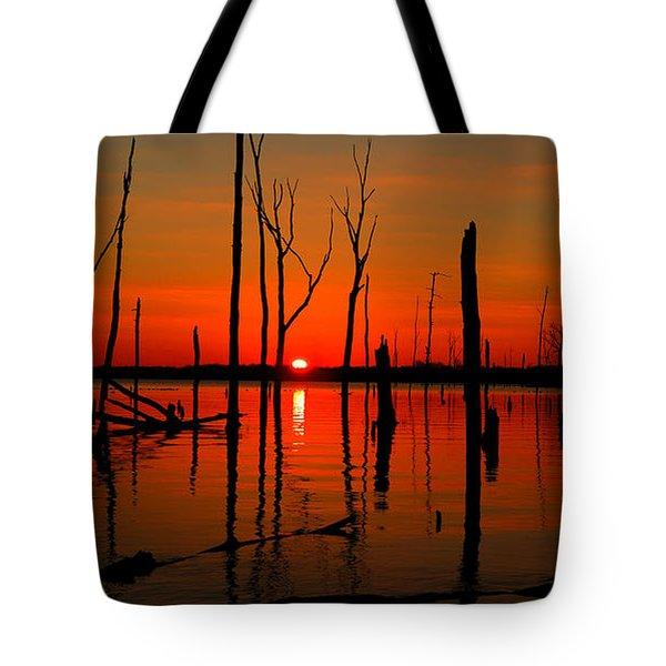 January Sunrise Tote Bag by Raymond Salani III