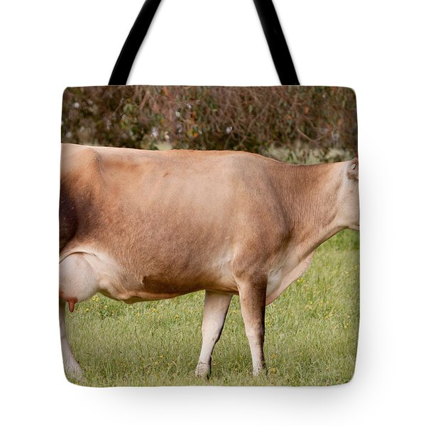 Jersey Cow In Pasture Tote Bag by Michelle Wrighton
