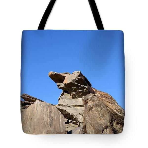 Joshua Tree Monster Rock Tote Bag by Barbara Snyder