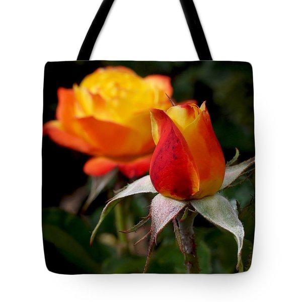 Judy Garland Rose Tote Bag by Rona Black