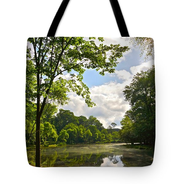 July Fourth Duck Pond With Goose Tote Bag by Byron Varvarigos